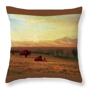 Buffalo On The Plains Throw Pillow by MotionAge Designs