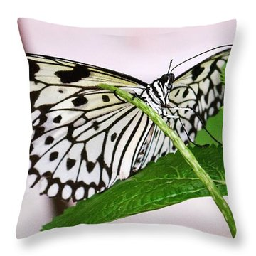 Paper Kite Butterfly No. 1 Throw Pillow by Sandy Taylor