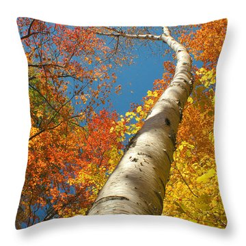 Canadian Autumn Throw Pillow by Mircea Costina Photography