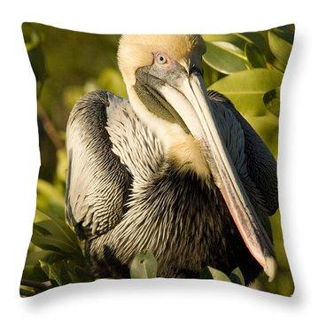Closeup Portrait Of A Brown Pelican Throw Pillow by Tim Laman