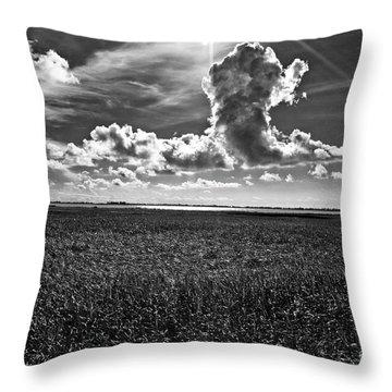 Cocodrie Marsh Throw Pillow by Scott Pellegrin