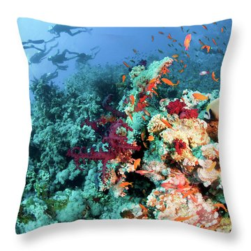 Coral Reef  Throw Pillow by Hagai Nativ