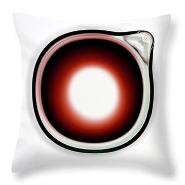 Throw Pillow featuring the photograph Red Wine Decanter by Frank Tschakert
