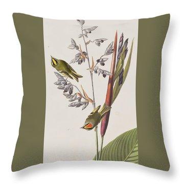 Golden-crested Wren Throw Pillow by John James Audubon