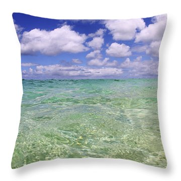 Green Water Seascape Throw Pillow by Vince Cavataio