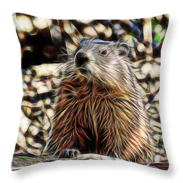 Groundhog Throw Pillow by Marvin Blaine