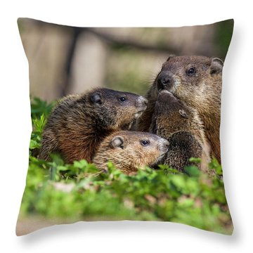 Happy Family Throw Pillow by Mircea Costina Photography