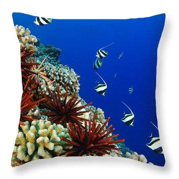 Hawaiian Reef Scene Throw Pillow by Dave Fleetham - Printscapes