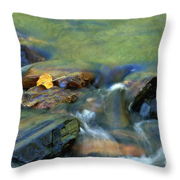 Hitching A Ride Throw Pillow by Sandra Bronstein