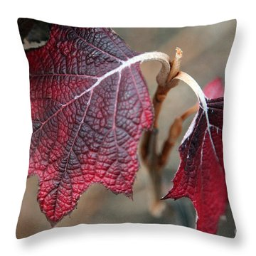 Leaves Throw Pillow by Amanda Barcon