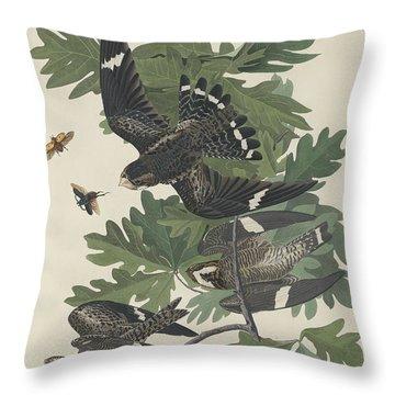 Night Hawk Throw Pillow by John James Audubon