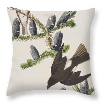 Olive Sided Flycatcher Throw Pillow by John James Audubon