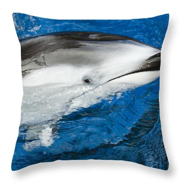 Pacific White-sided Dolphin Throw Pillow by Dave Fleetham - Printscapes