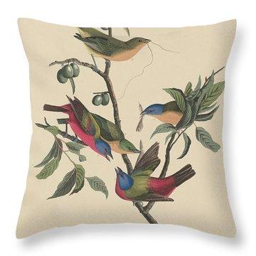 Painted Bunting Throw Pillow by John James Audubon