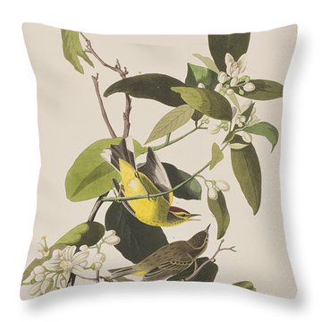 Palm Warbler Throw Pillow by John James Audubon