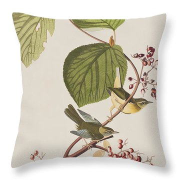 Pine Swamp Warbler Throw Pillow by John James Audubon