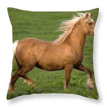 Prancing Pony Throw Pillow by Angel  Tarantella