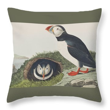 Puffin Throw Pillow by John James Audubon