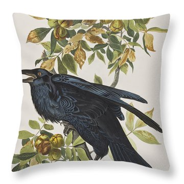 Raven Throw Pillow by John James Audubon