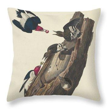 Red-headed Woodpecker Throw Pillow by John James Audubon