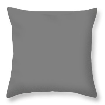 River Rapid Throw Pillow by Evgeni Dinev