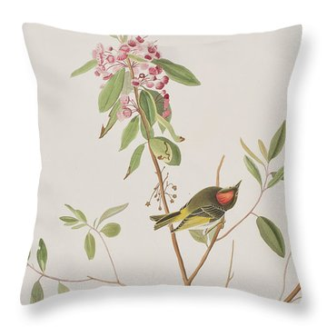 Ruby Crowned Wren Throw Pillow by John James Audubon