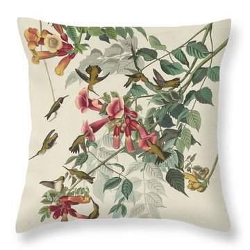 Ruby-throated Hummingbird Throw Pillow by John James Audubon