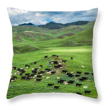 Salt And Pepper Pasture Throw Pillow by Todd Klassy