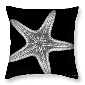 Starfish Throw Pillow by Ted Kinsman