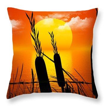 Sunset Lake Throw Pillow by Robert Orinski
