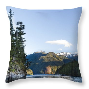 The Rugged, Rocky Forested Shoreline Throw Pillow by Taylor S. Kennedy