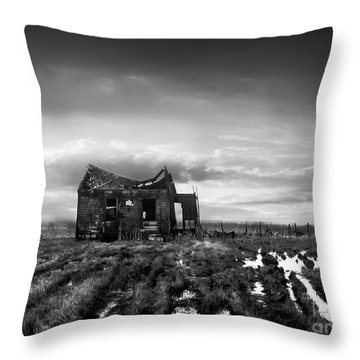 The Shack Throw Pillow by Dana DiPasquale