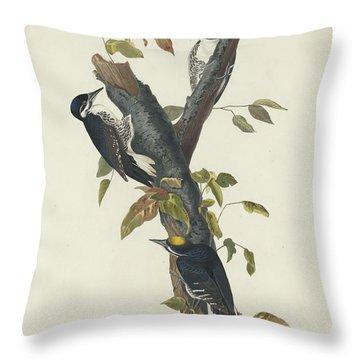 Three-toed Woodpecker Throw Pillow by John James Audubon