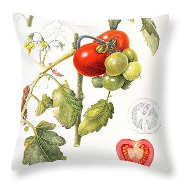 Tomatoes Throw Pillow by Margaret Ann Eden