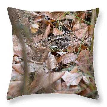 Woodcock Throw Pillow by Chip Laughton