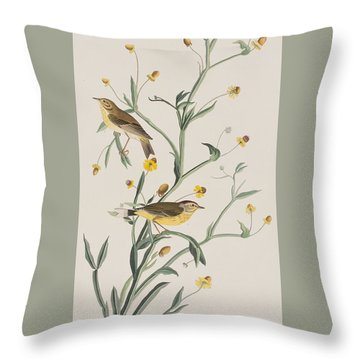 Yellow Red-poll Warbler Throw Pillow by John James Audubon