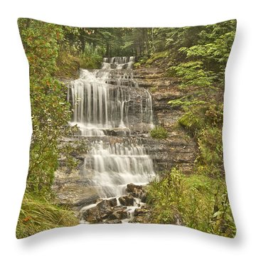 Alger Falls Throw Pillow by Michael Peychich