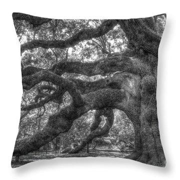 Angel Oak Tree Charleston Sc Throw Pillow by Dustin K Ryan