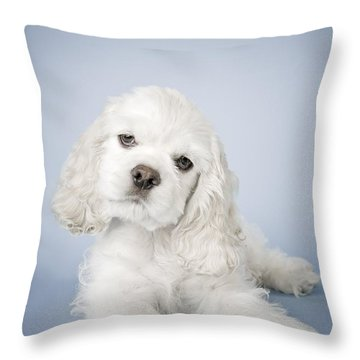 Cocker Spaniel Throw Pillow by David DuChemin