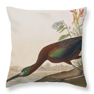 Glossy Ibis Throw Pillow by John James Audubon