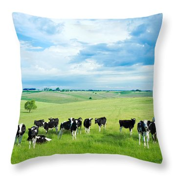 Happy Cows Throw Pillow by Todd Klassy