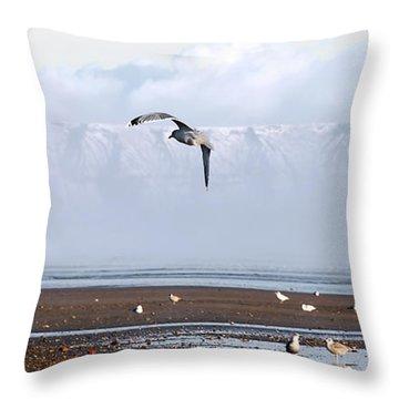 Seagull Throw Pillow by Svetlana Sewell