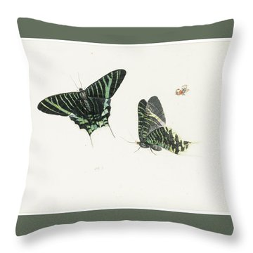 Studies Of Two Butterflies Throw Pillow by Anton Henstenburgh