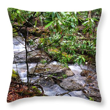 White Oak Run In Spring Throw Pillow by Thomas R Fletcher