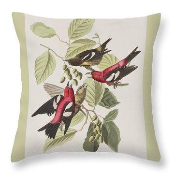 White-winged Crossbill Throw Pillow by John James Audubon