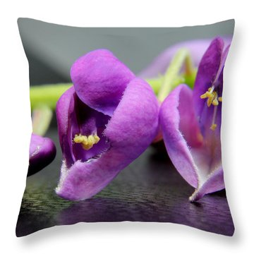 2010 Wisteria Blossom Up Close 1 Throw Pillow by Robert Morin