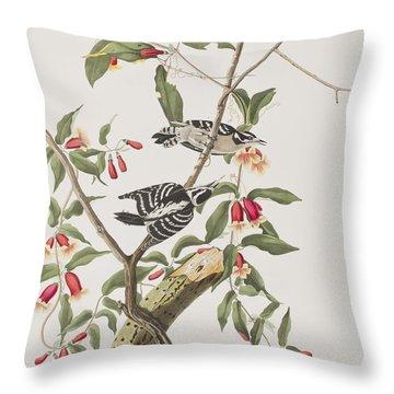 Downy Woodpecker Throw Pillow by John James Audubon