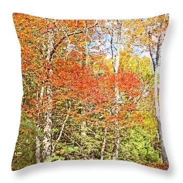 Throw Pillow featuring the digital art Forest Interior Autumn Pocono Mountains Pennsylvania by A Gurmankin
