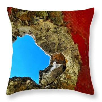 377 At 41 Series 4 Throw Pillow by Skip Hunt