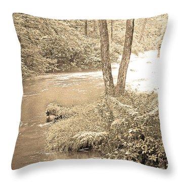 Throw Pillow featuring the photograph Mud Run Pocono Mountain Stream Pennsylvania by A Gurmankin